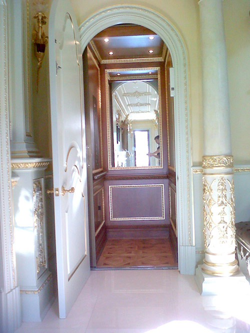 Luxury Home Elevator